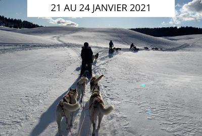Rando Healthy & chiens de traineaux dans les Hautes-Alpes