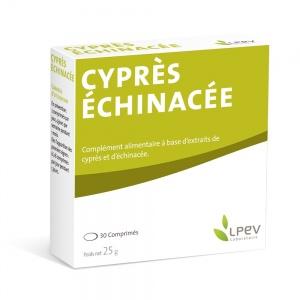 Cyprès - Échinacée