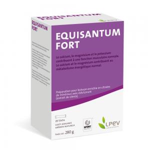 Equisantum Fort