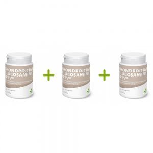 Lot promotionnel : 3 Chondroïtine - Glucosamine