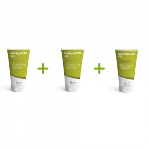 Lot promo : 3 Harpagreen gel (3x100ml)