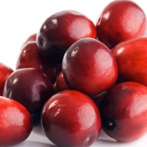 CANNEBERGE Fruit